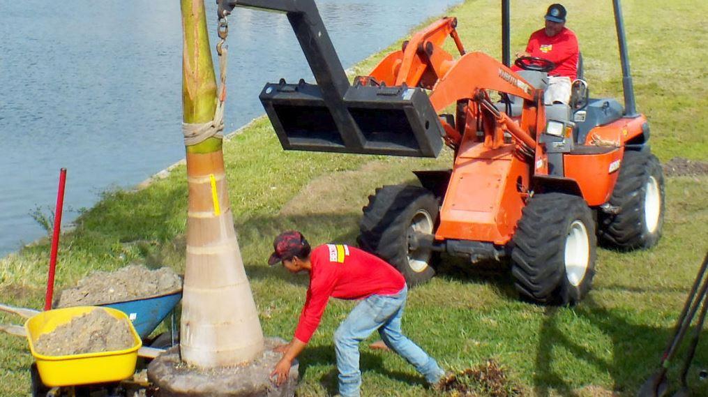 Landscape Installation Services in Pine Island