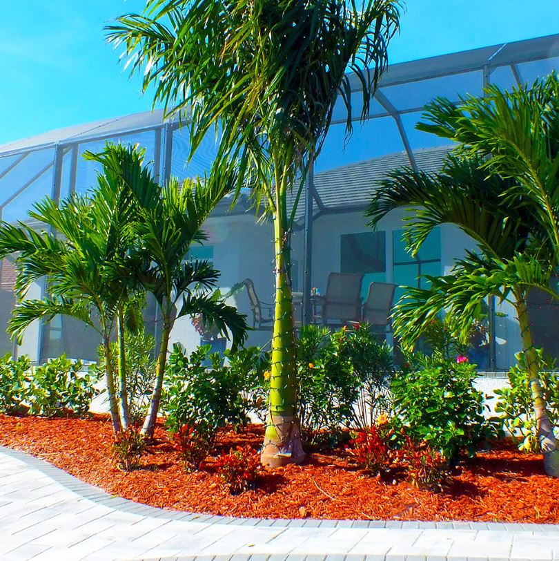 Buy Mulch in Punta Gorda