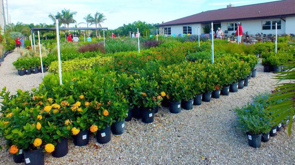 Plant Nursery Charlotte County