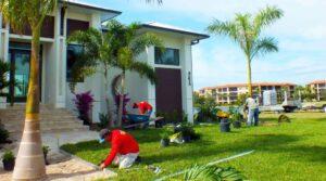 Landscaping Services Punta Gorda